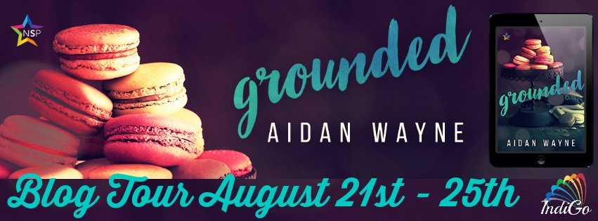 Blog Tour: Character Bio, Excerpt & Giveaway -- Aidan Wayne - Grounded