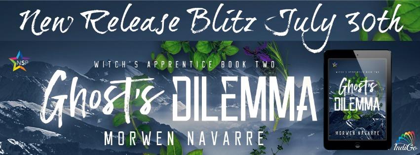 Release Blitz: Ghost's Dilemma by Morwen Navarre
